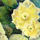 Yellow Prickly Pear Blossoms by bluerabbit