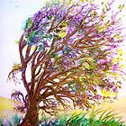 Dreaming Tree  by  Linda Callaghan