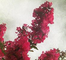 Red Crape Myrtle Impasto by Christopher Johnson