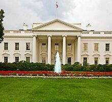 The White House by Raoul Isidro