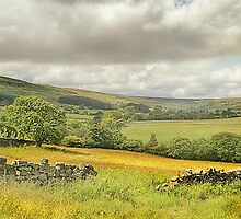 A Ramble In Rosedale by patrixpix