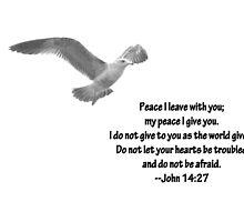 Seagull with John 14:27 Verse by Corri Gryting Gutzman