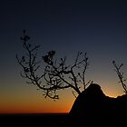 Sunset Silhoutte, Pinnacles, WA   by JVGMcGhie