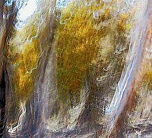 Belconnen 2 by Steve Hazael
