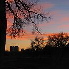 """Orange Sunset Over Downtown"" by dfrahm"