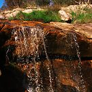 'A Winters Waterfall' - West Kooribinjal Brook Reserve, Jarrahdale WA by Brien Bland