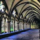 In the cool of the cloister - Salisbury Cathedral by Cat Perkinton