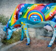 At The End of The Rainbow - Colourful Cow, Normanville, South Australia by Mark Richards