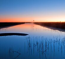 Blue Canal - Near Dalby Qld by Beth  Wode