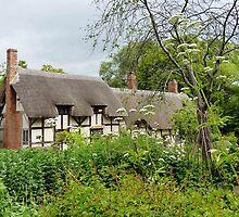 Anne Hatherway's Cottage. by artfulvistas