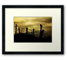Skywatcher Framed Print