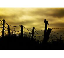 Skywatcher Photographic Print