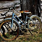 Robins Blue Bike by JLBphoto