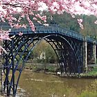 Ironbridge, Shropshire by Graeme  Hyde