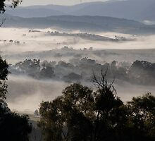 landscapes #215, foggy valleys by stickelsimages