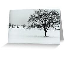 Winter Farmland 2010 Greeting Card