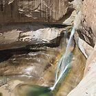 Lower Calf Creek Falls by Darren Logan