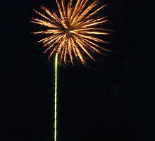 Make A Wish by tscp