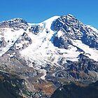 Mt. Rainier by Don Siebel
