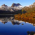 A Cradle Mountain Winter Reflection by Paul Campbell  Photography