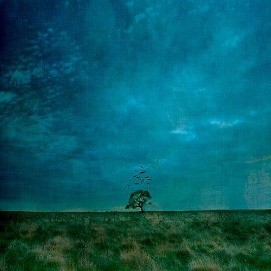 One Tree by Melinda Kerr