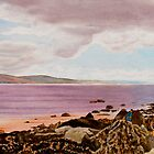 Original Watercolor Painting - Dublin Seascape - 18.5 X 35.75 by Daniel Fishback