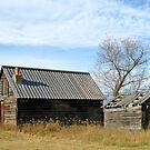 Fort Steele by Twistedwhisker1