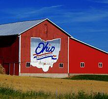 Ohio Bicentennial Barn by Marcia Rubin