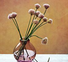 Chive Flowers by Colleen Farrell