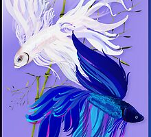 Blue 'n' White Siamese Fighting Fish by Lotacats