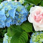 Hydrangea and Rose, Best Friends by Joan Harrison