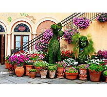 Canines in Love, EPCOT's Flower and Garden Festival Photographic Print