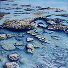 Rock Pools by Jessica  Holliday