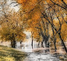 River Flooding #2 by kenspics