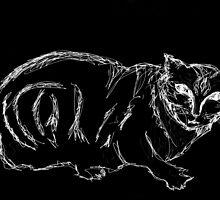 sketchy-kitty.... by Sam Fonte