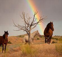 Rainbow's End by Kent Keller
