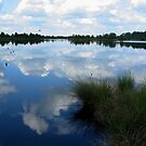 Summersky and Lake by ienemien