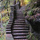 Buttermilk Falls, Autumn 1 by Mark  Reep