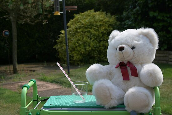Teddy in the garden by Audrey Clarke