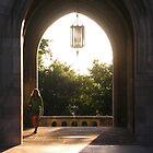 Taylor Hall, Cornell  by Mark  Reep