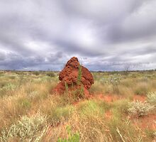 Outback Australia by MarcRusso