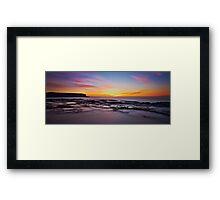 Chameleon Dawn Framed Print