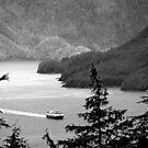 Alaska State Ferry by Bob Hortman