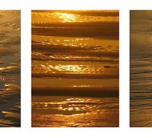 Sand Triptych by Cathy Martin