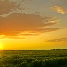 A Plains Sunset by John  De Bord Photography