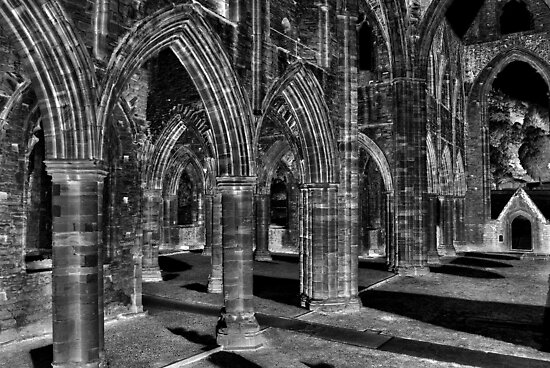 Tintern Arches by Paul Gibbons