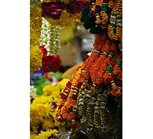 Floral Archway Photographic Print