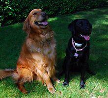 Rusty & Ellie by jodi payne