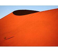 Sculptured dune, Namib Desert soon after sunrise  Photographic Print