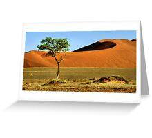 Namib Desert Dunes, Tree & Dry Tsauchab River Valley, Namibia  Greeting Card